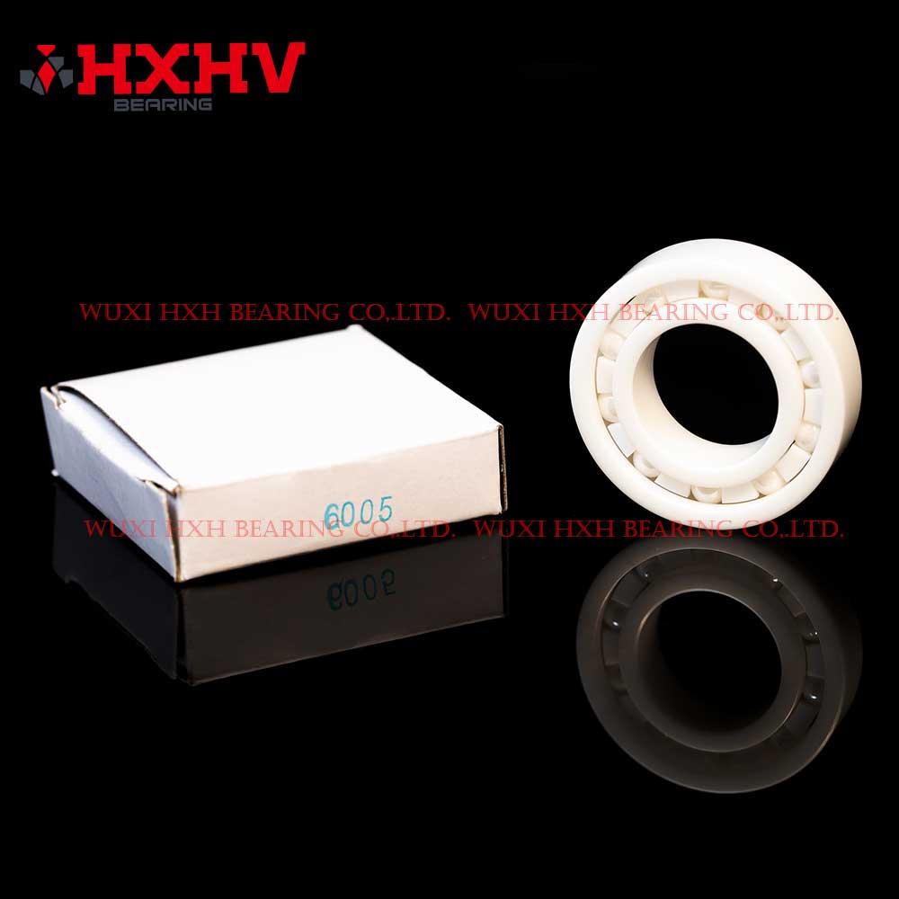 HXHV full ceramic ball bearings 6005 with 10 ZrO2 balls and PTFE retainer (1)