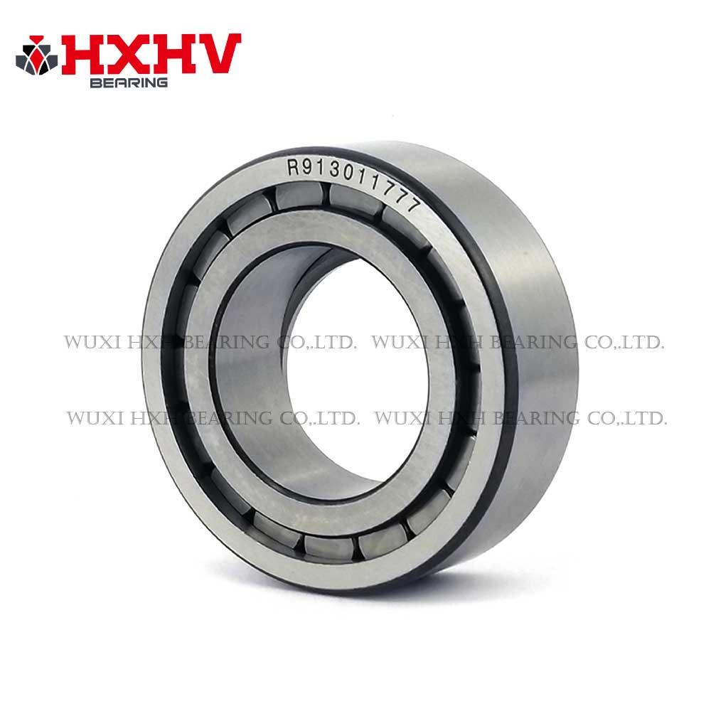 913011777 HXHV Custimozed Cylindrical Roller Bearings (3)