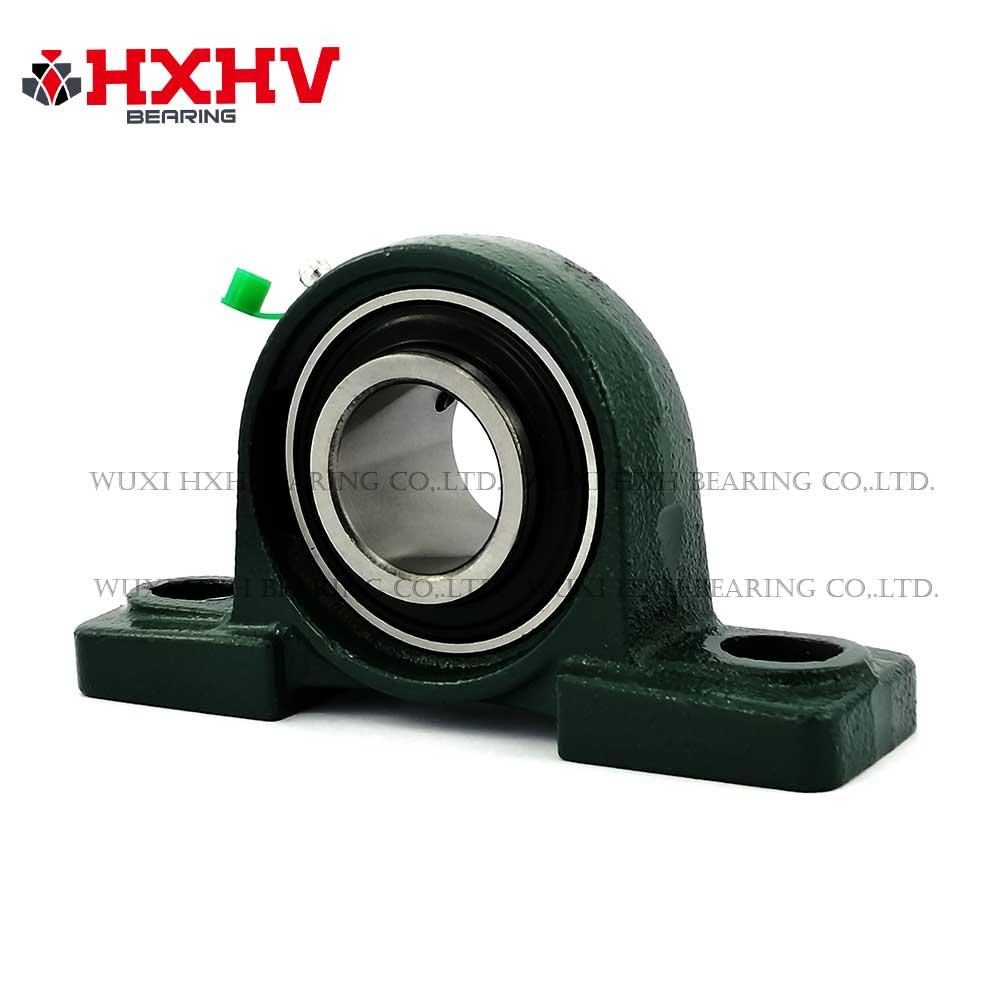 HXHV pilow block bearing UCP 203 (1)