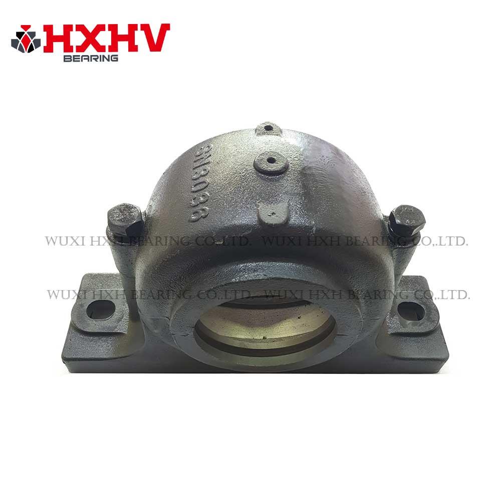SN3036 - HXHV pilow block bearing (1)